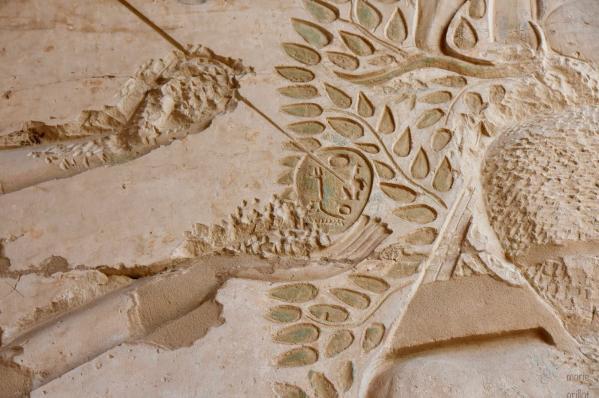 Au Ramesseum, Atoum écrit le nom de couronnement de Ramsès II sur les fruits de l'arbre-ished (le Balanites)